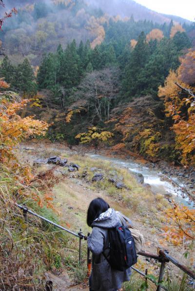 晩秋の志賀高原へ。⑨地獄谷温泉へ その3 地獄谷温泉から横浜に帰宅します。