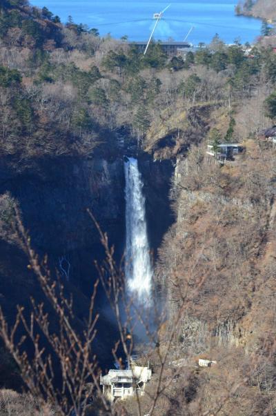 修学旅行生と外国人であふれる日光の旅 2日目 枯れ木ばかりの華厳の滝