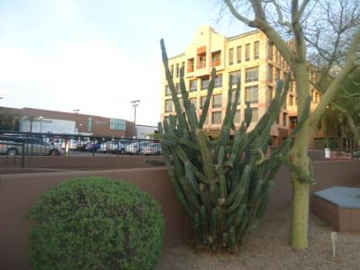 アリゾナ州 スコッツデール - ヒストリック ダウンタウン