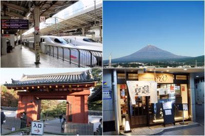 そうだ 京都、行こう~1 平等院 (2019.11.19)