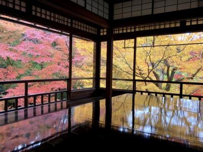 11月末 瑠璃光院の紅葉