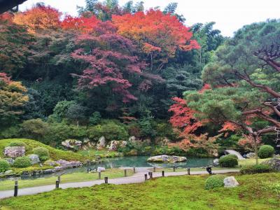 美術鑑賞&紅葉巡り秋の京都を満喫♪2019
