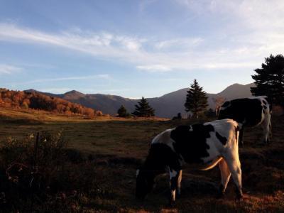 秋の山田牧場、五色温泉、七味温泉