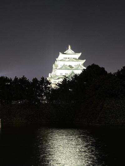 ライトアップ名古屋城🏯