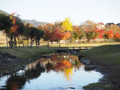 宮ヶ瀬湖をぐるっと満喫