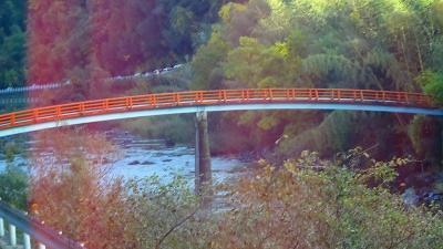 日帰りバスツアー「香嵐峡の紅葉」と「なばなの里のイルミ」(06) 高速を降りて香嵐峡まで 下巻。