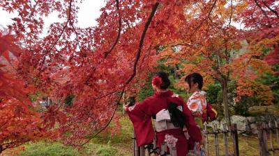 京都、南禅寺~嵐山紅葉めぐり