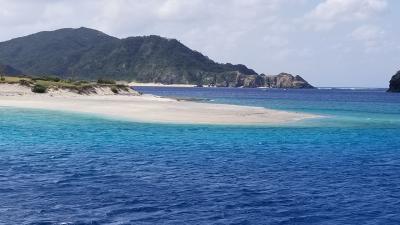 座間味島で慶良間ブルー見た
