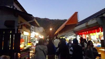 日帰りバスツアー「香嵐峡の紅葉」と「なばなの里のイルミ」(08) 薄暮の香嵐峡散策 下巻。
