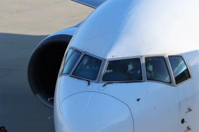 広島へ学会で!もちろん広島グルメ名物も狙いです。JAL特典航空券で行きました。