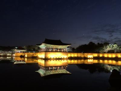 35ヶ月連続、35回目のソウル訪問。③慶州で世界遺産めぐり。
