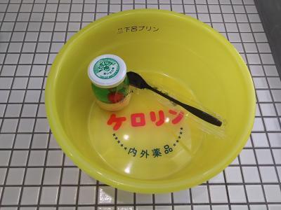 下呂温泉の旅(2) ~足湯とプリンを楽しむ温泉街~