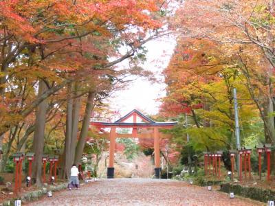 旧竹林院紅葉~日吉大社と坂本散策
