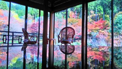 シニア夫婦温泉旅 嬉野温泉&佐賀の紅葉を訪ねて 前半