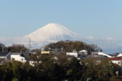 雲頂庵前で富士見-2019年秋