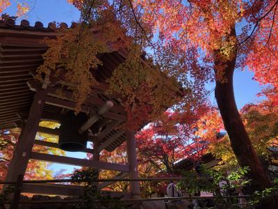 2019年11月 京都嵐山の紅葉 常寂光寺と京都タワー