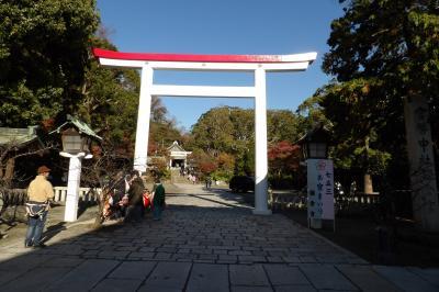 鎌倉宮-2019年秋