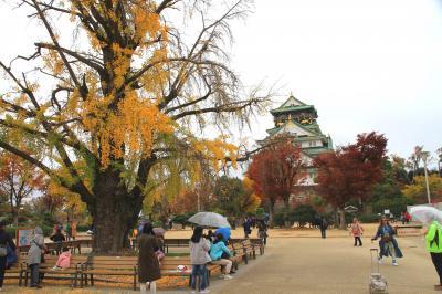 大阪城公園の紅葉 色あせ始め