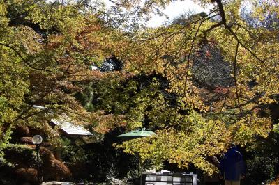 旧山本条太郎別邸(庭園など)