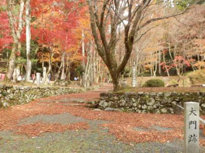 晩秋の湖北、鶏足寺へ