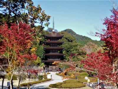2019年11月 山口県・山口市 その2 亀山公園と瑠璃光寺の五重塔