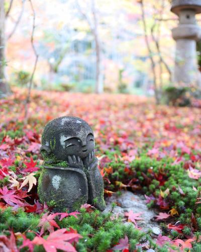 秋の京都*詩仙堂~圓光寺