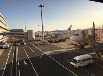 '19.11 日帰りで久米島に一人旅...のはずが、まさかの欠航…