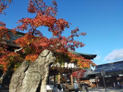 紅葉の秋、定番の京都めぐり