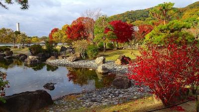池田城址公園へ十月桜と紅葉を見に行きました 中巻。