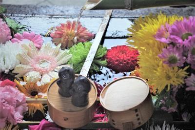 京都 秋の特別公開 毘沙門天三尊像、吉祥紅葉 京焼とコラボレーションの京花小鉢で彩られた東福寺塔頭勝林寺