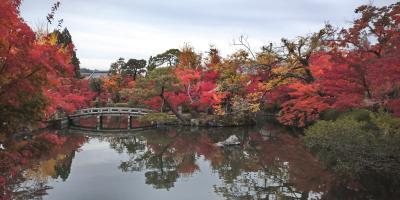 【京都の紅葉、南禅寺~永観堂】 錦秋の京都で短い時間でも紅葉を見たい!