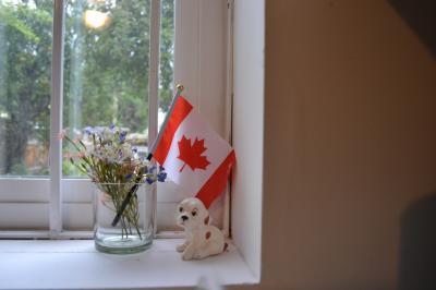キャピラノ吊り橋編!美国カナダのバンクーバーで夏の親子旅☆海・山・カモメ・蜂・国旗・ハグ☆