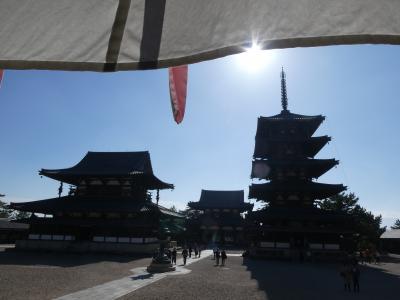 澄み切った青空の下で奈良を一巡り