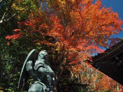 紅葉と富士山の絶景! 初めての高尾山(1号路往復)