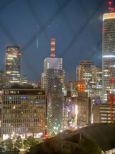 一時帰国 ニース~東京 フライトとホテル編