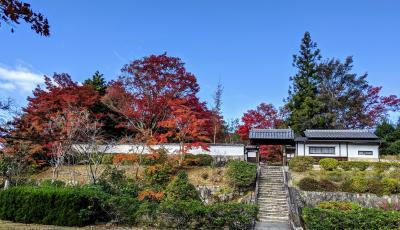 紅葉をもとめて柳生の里と岩船寺へ