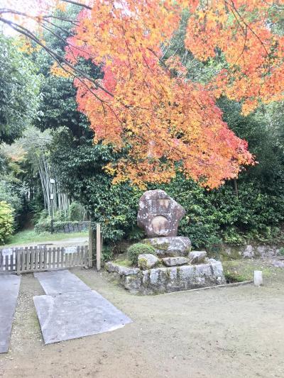 2019関西の旅 西ノ京