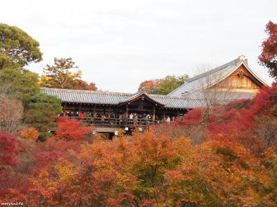 2019秋 関西の紅葉狩り:その4 伏見稲荷~東福寺