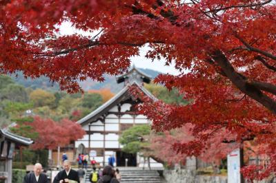 ブララブコー  「京都の紅葉を狩り尽くせ!~mission2 嵐山エリアはサクッと攻略せよ!!嵐山編~」