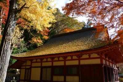 晩秋の奈良めぐり(その2)