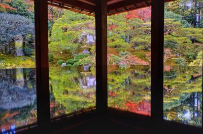 滋賀の紅葉の穴場『旧竹林院』&明智光秀ゆかりの『西教寺』へ・・・