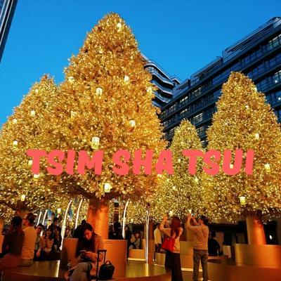香港★今年オープンした大型施設でクリスマス気分と夜景を楽しむ ~K11 Musea・星光大道~