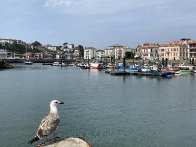 フランス(2)海辺の貝に辿り着く/サンジャンドリュズ