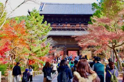 ブララブコー  「京都の紅葉を狩り尽くせ!~mission3-1 哲学の道を攻略せよ!!南禅寺・天授庵編~」