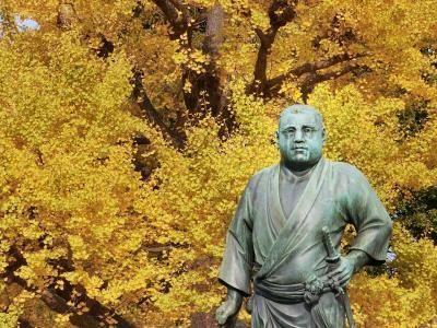 東京('19紅葉狩り)