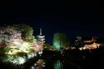 今年も紅葉鑑賞 京都へ