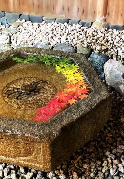 鎌倉の紅葉  一条恵観山荘の紅葉と、鎌倉から北鎌倉へおさんぽ