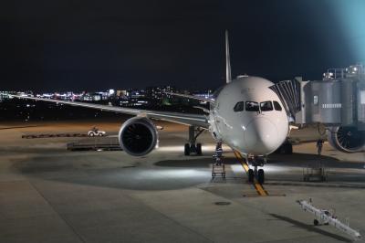 専用入口から・・・伊丹空港ダイヤモンドプレミアラウンジ、国内線B788のファーストクラス。