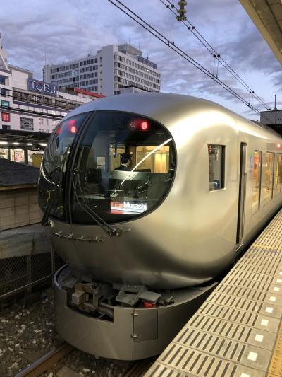 【乗り鉄】関東私鉄特急チョイ乗り旅