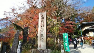 紅葉の高尾山に登ったよ